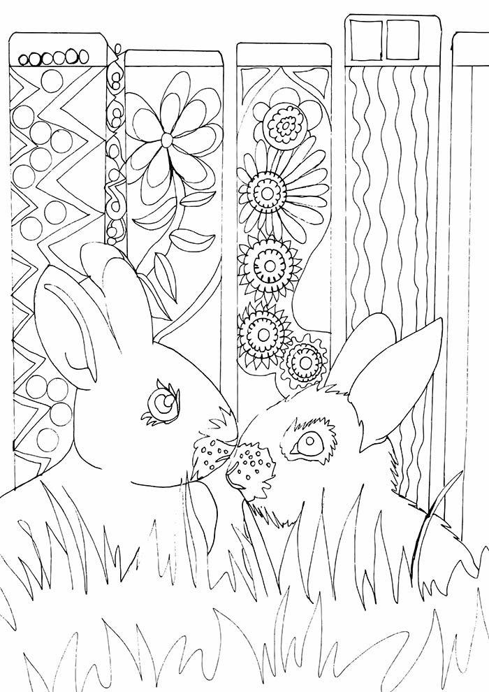 casal coelhos para colorir