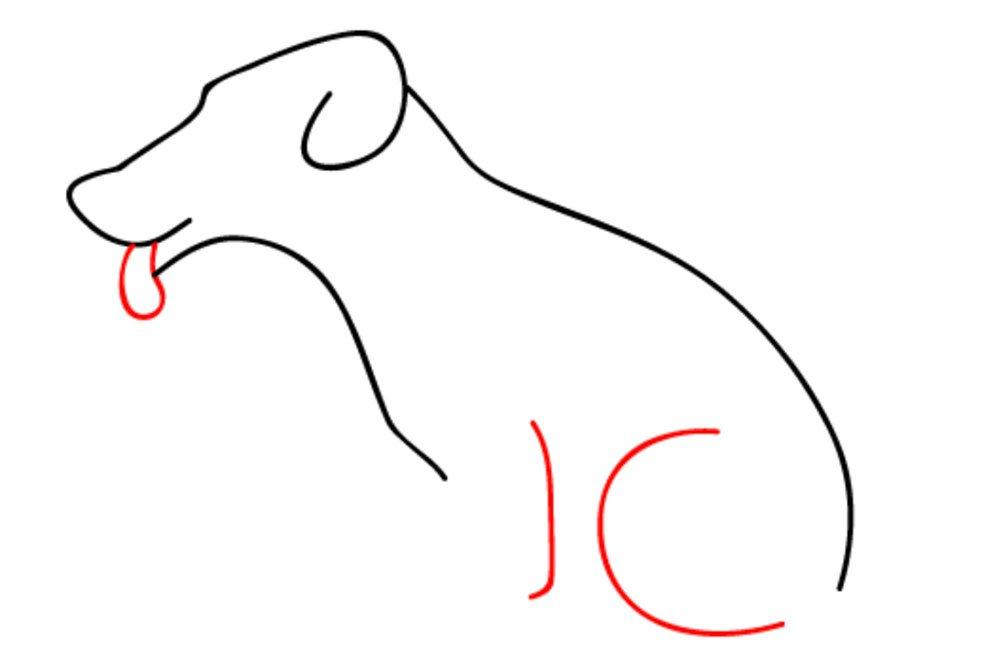 como desenhar um cachorro passo 5