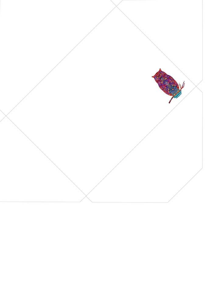 envelope coruja