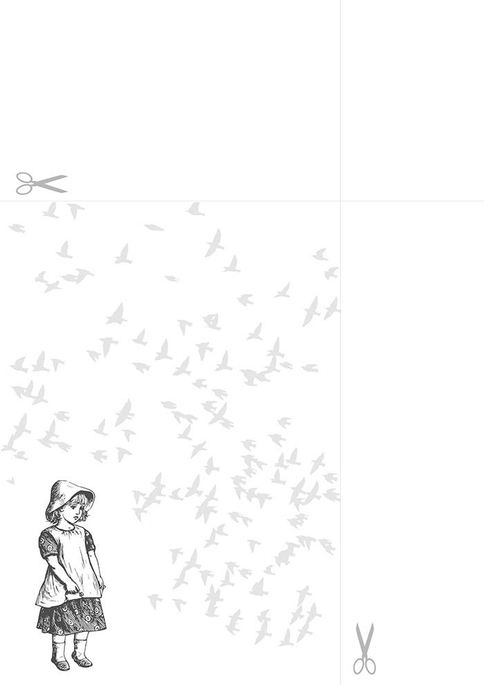papel de carta pássaros