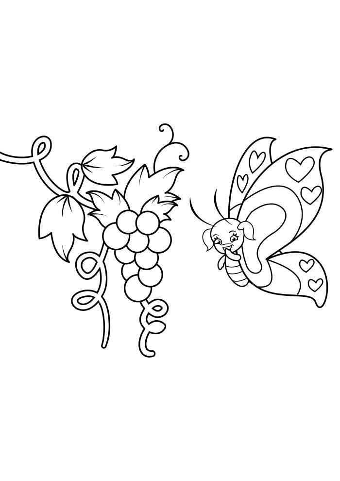 borboleta para colorir 6