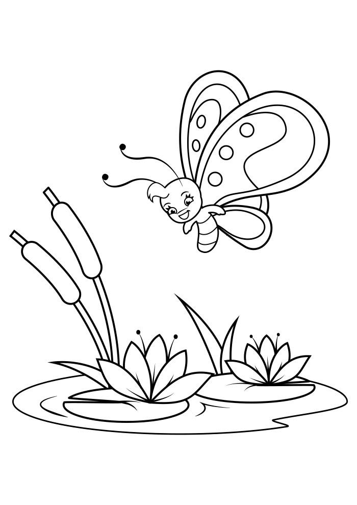borboleta para colorir 9