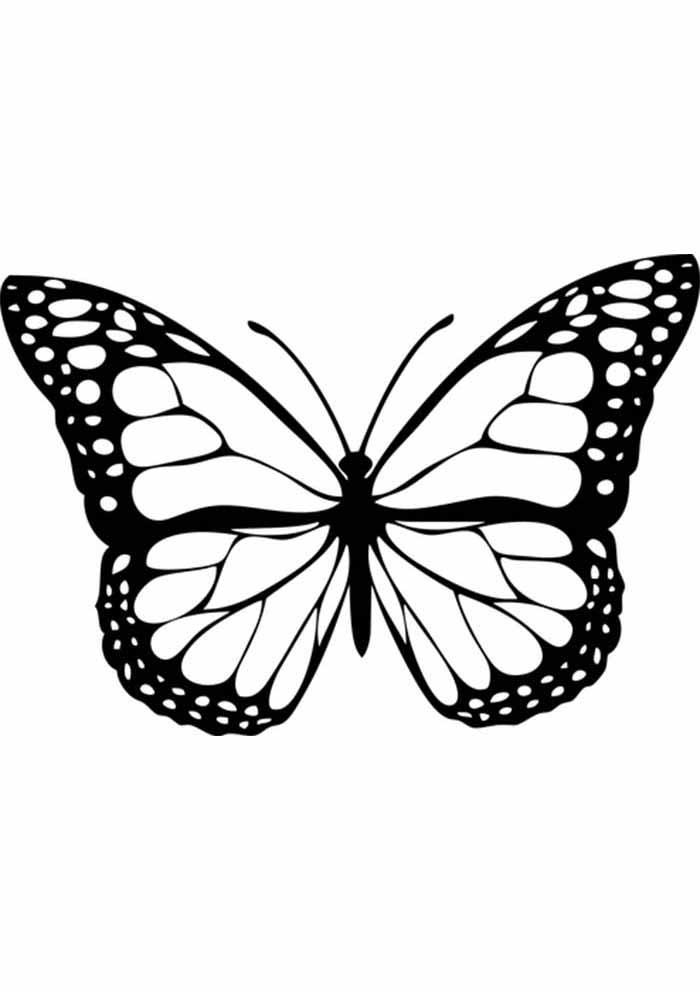borboleta para colorir fina