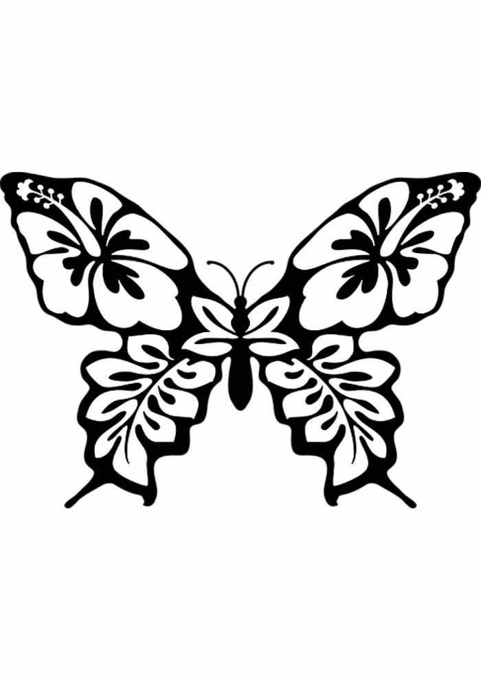 borboleta para colorir florida