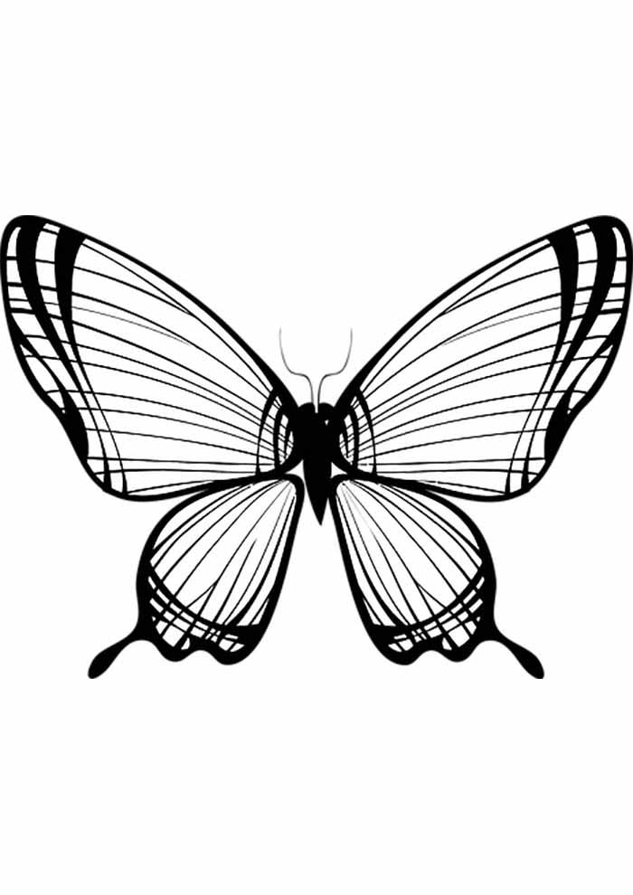 borboleta para colorir grande