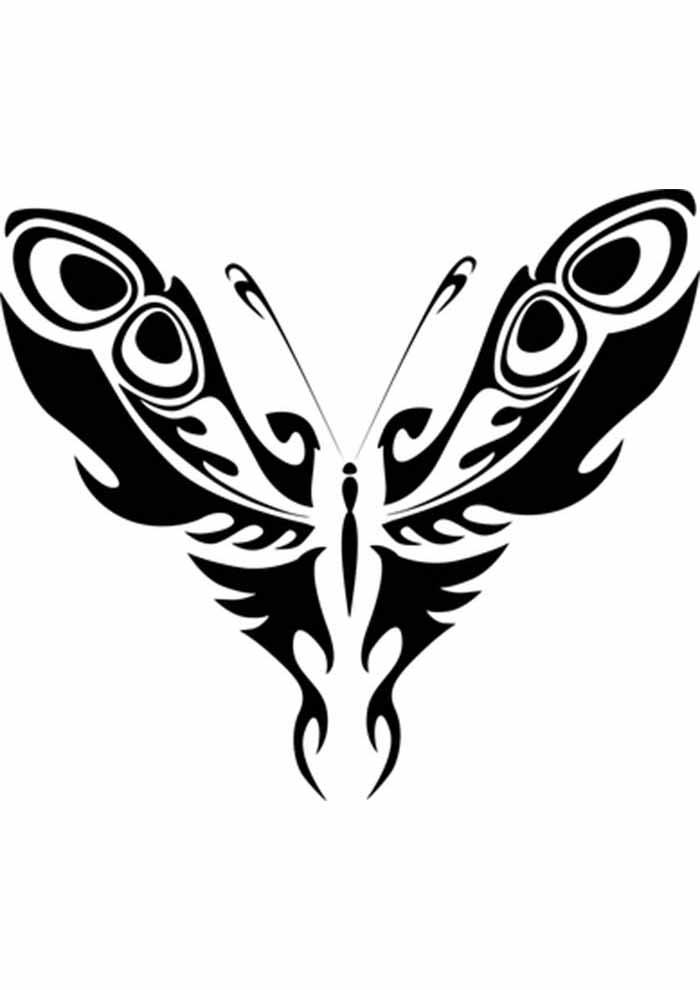 borboleta para colorir longa asas