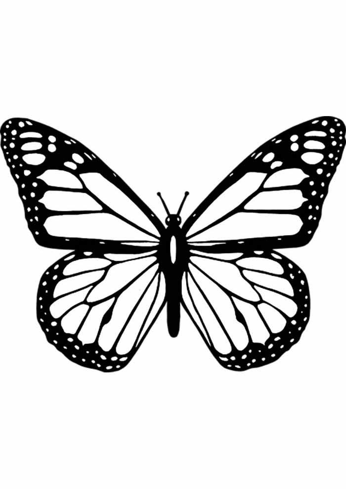 borboleta para colorir para adultos