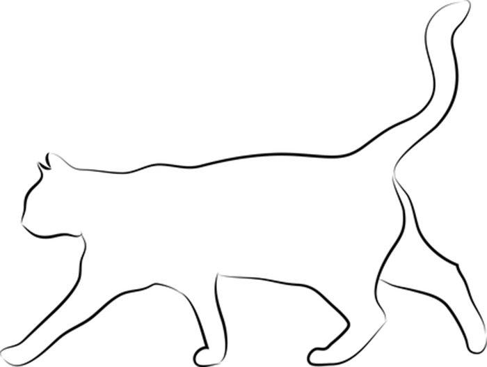 Borda de gato para colorir
