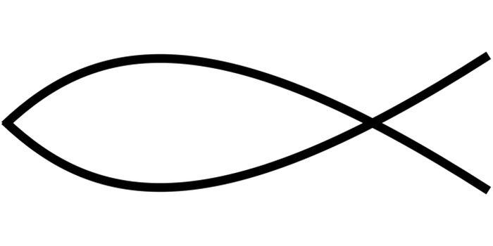 Borda peixe para colorir