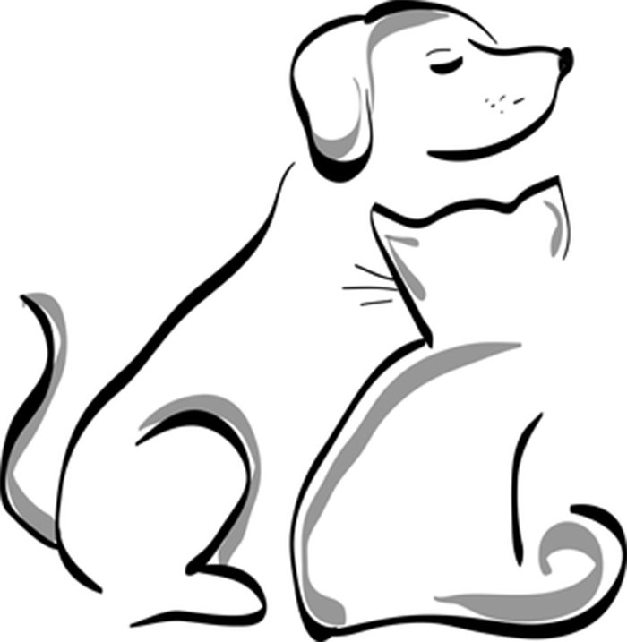 Cachorro e gato para colorir
