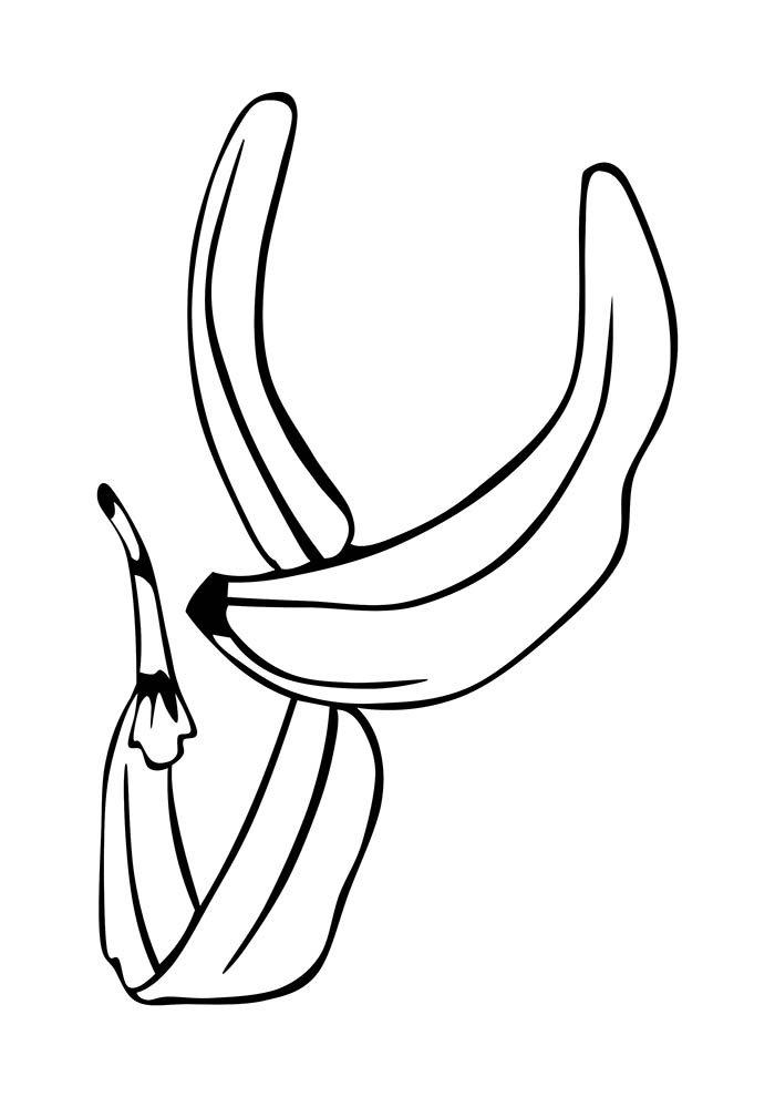 casca de banana para colorir