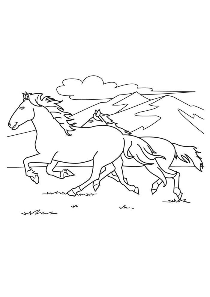cavalo para colorir 36