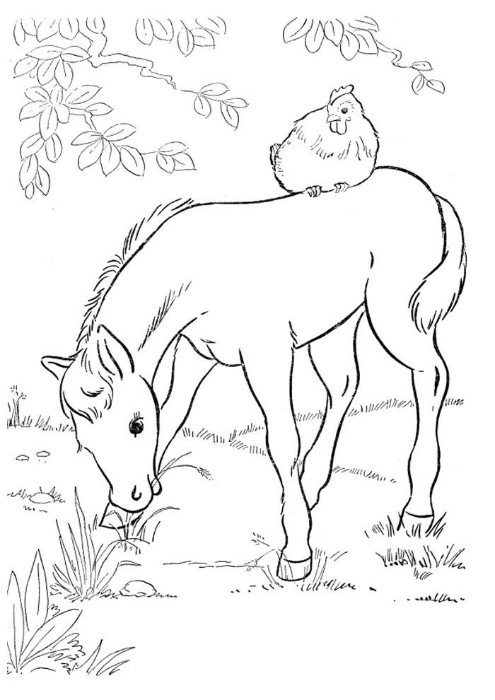 cavalo para colorir 41