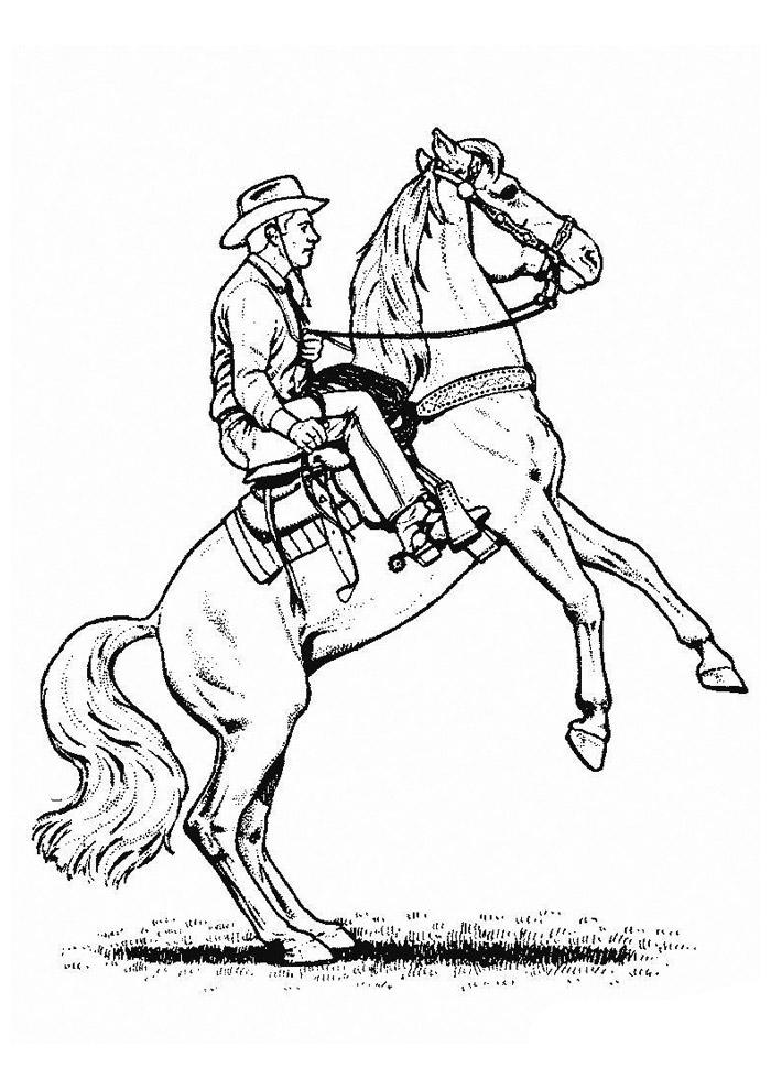 cavalo para colorir 47