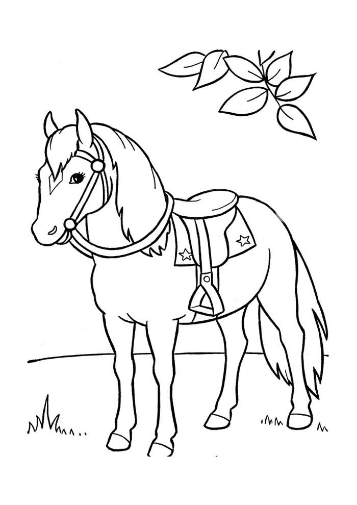 cavalo para colorir 49
