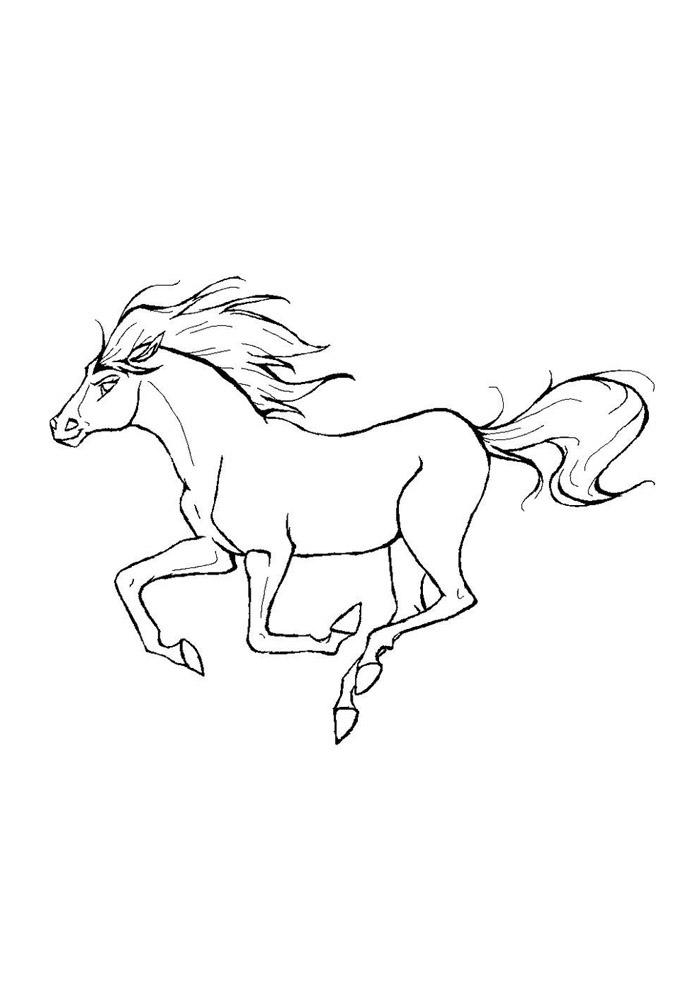 cavalo para colorir 57