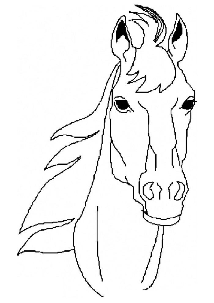 cavalo para colorir 63