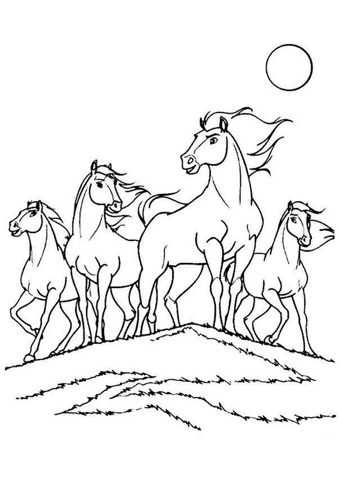 cavalo para colorir 64