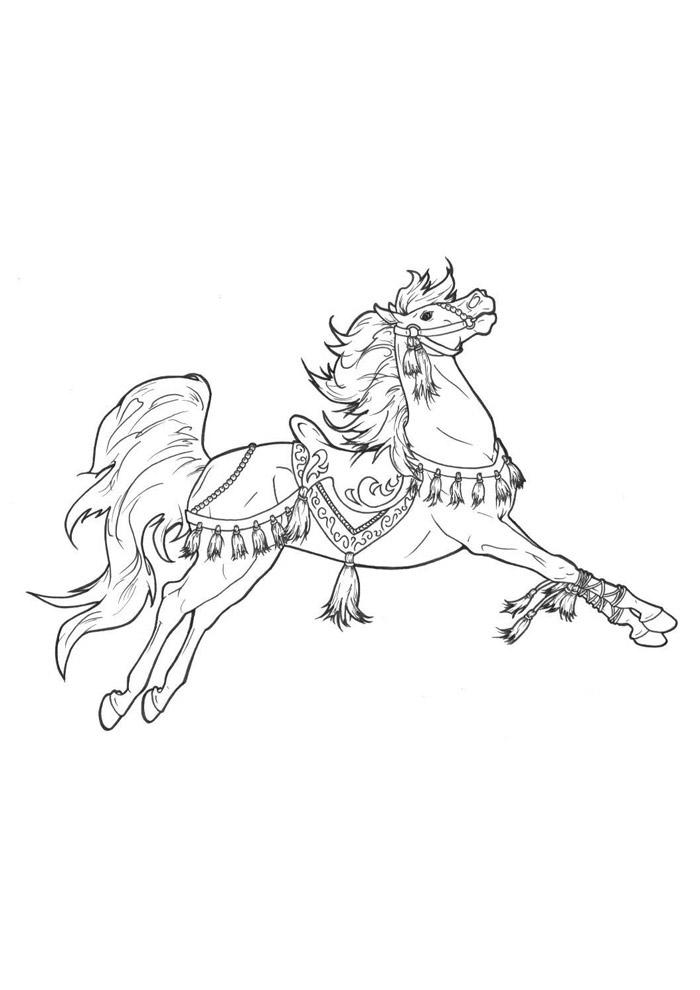 cavalo para colorir 66