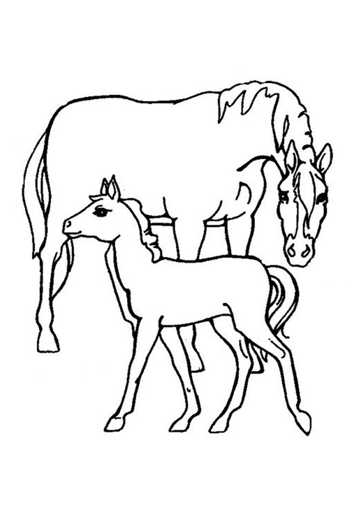 cavalo para colorir 70