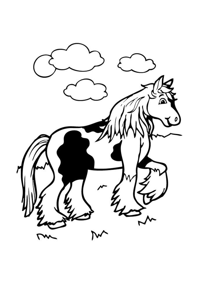 cavalo para colorir 72