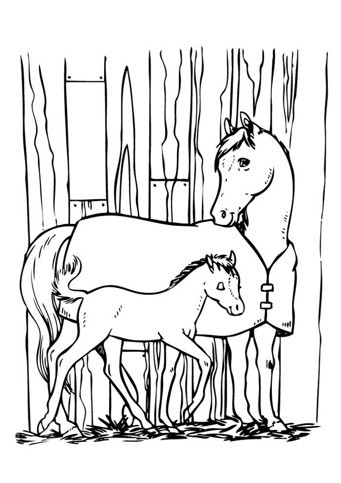 cavalo para colorir 73