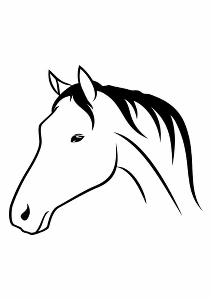 cavalo para colorir cabeça de perfil