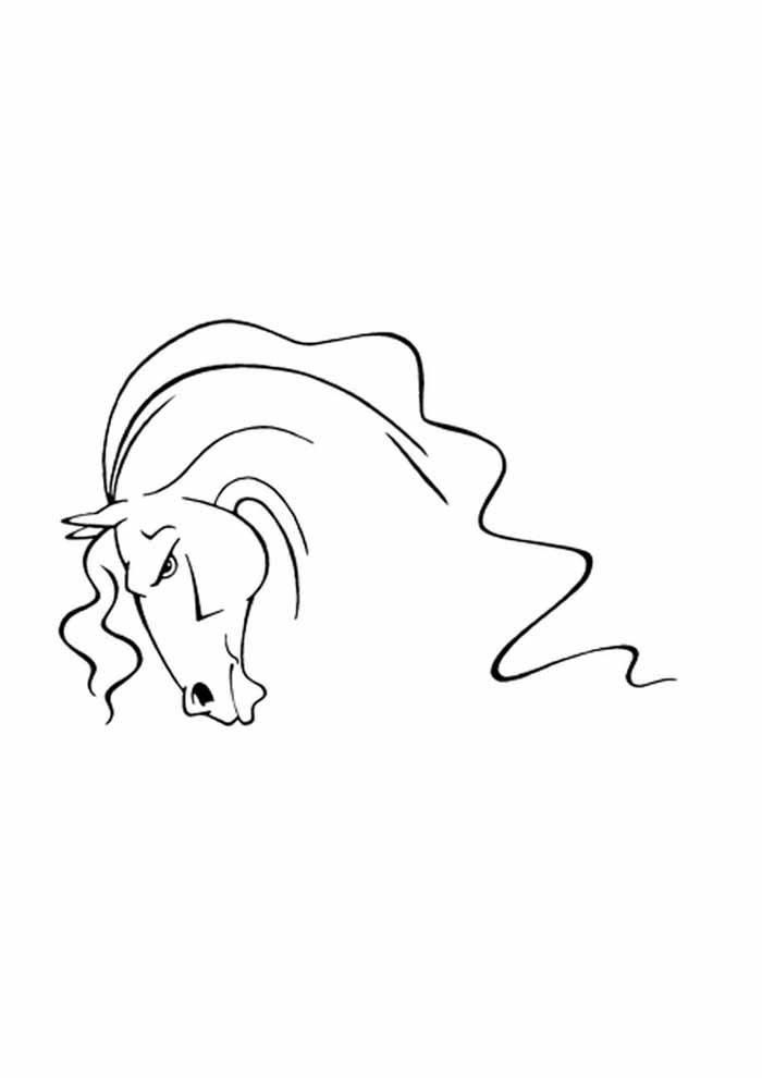 cavalo para colorir cabeça desenho