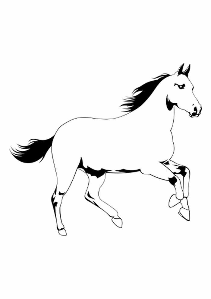 cavalo para colorir e imprimir