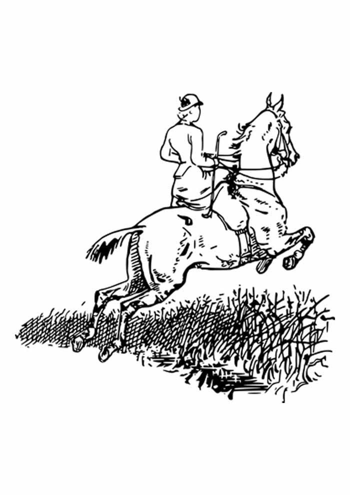 cavalo para colorir saltando