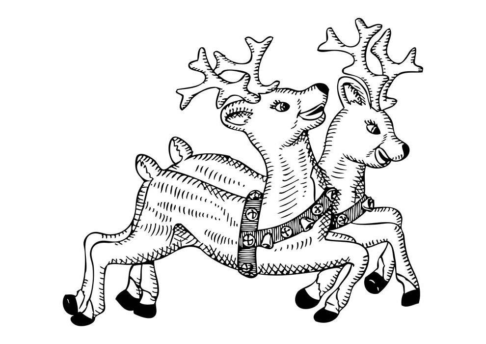 desenho de natal para colorir renas