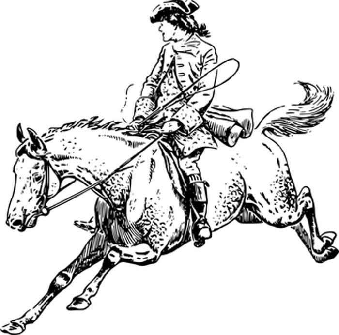 Desenho para colorir de cavalo selvagem