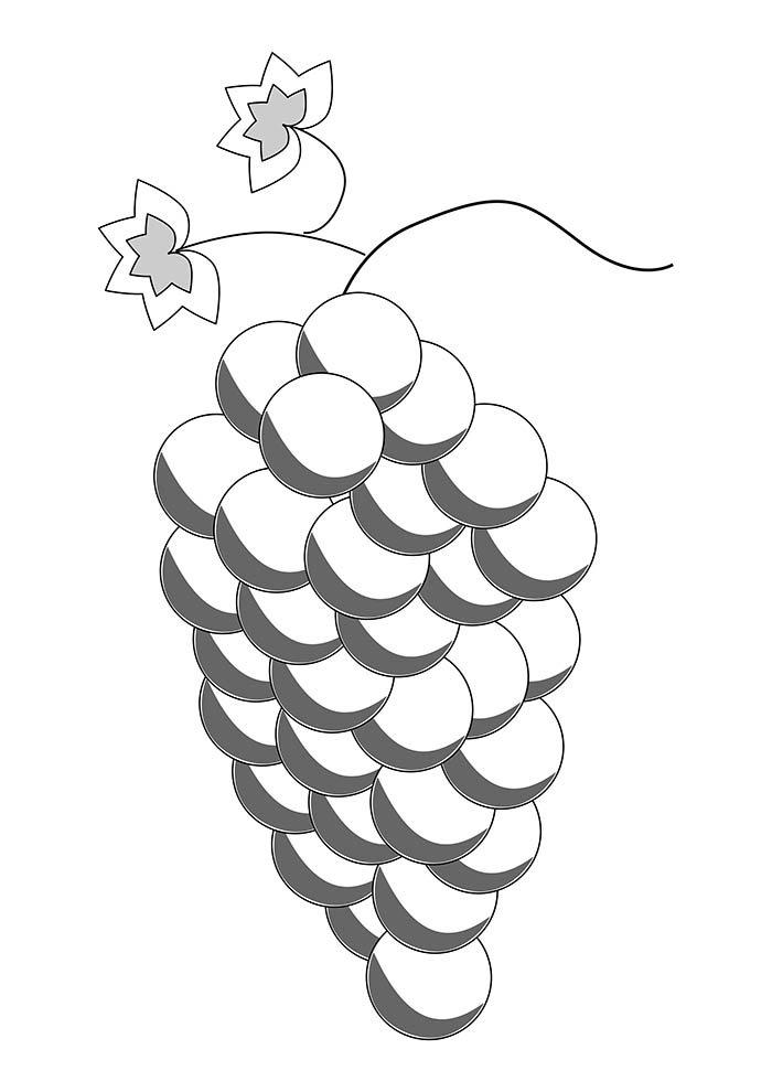 desenho uva para colorir