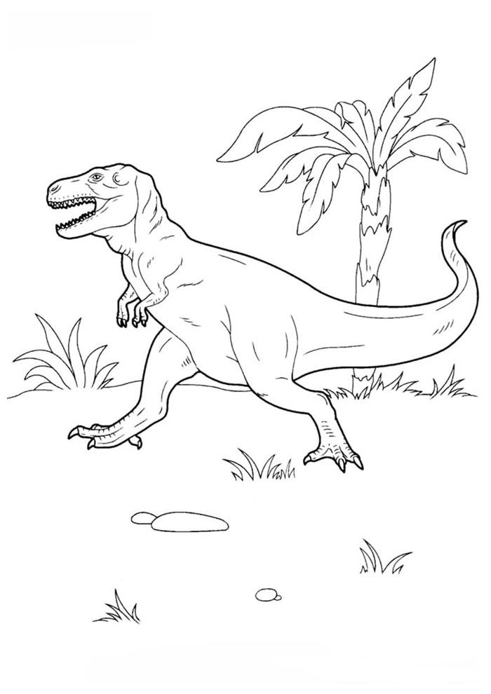 dinossauro para colorir 39