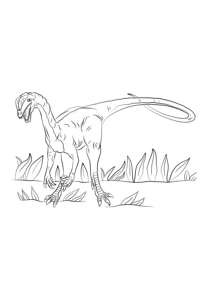 dinossauro para colorir 45