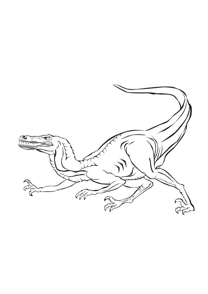 dinossauro para colorir 50