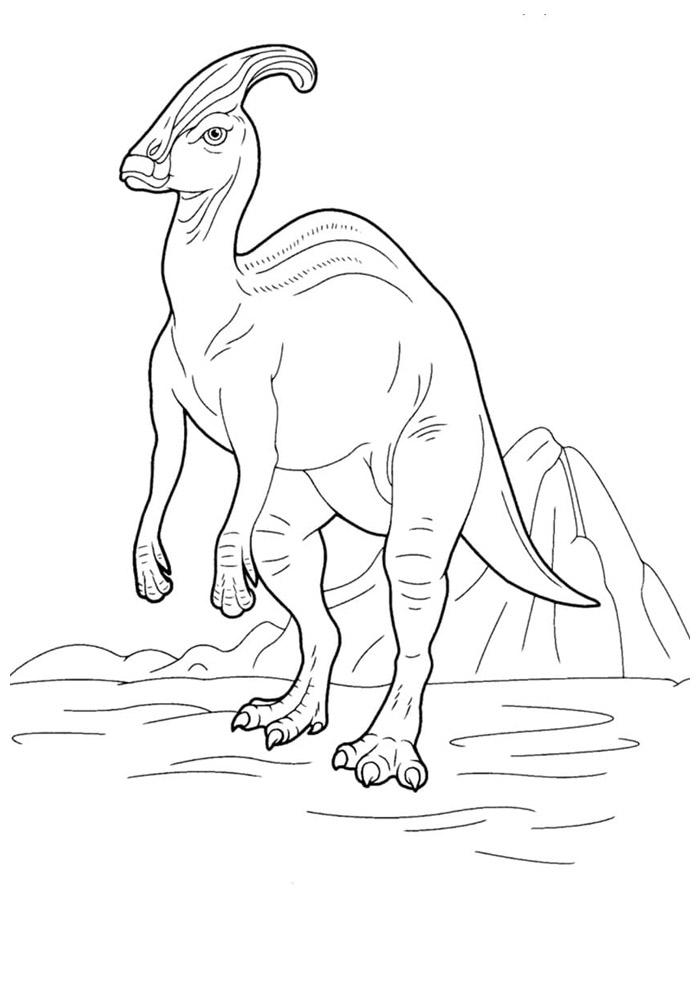 dinossauro para colorir 57
