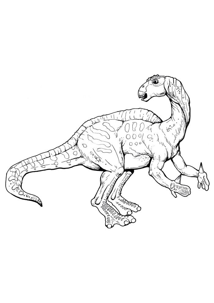 dinossauro para colorir 58