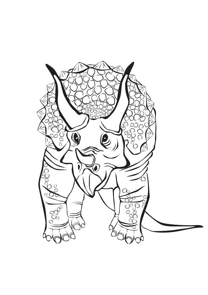 dinossauro para colorir 86