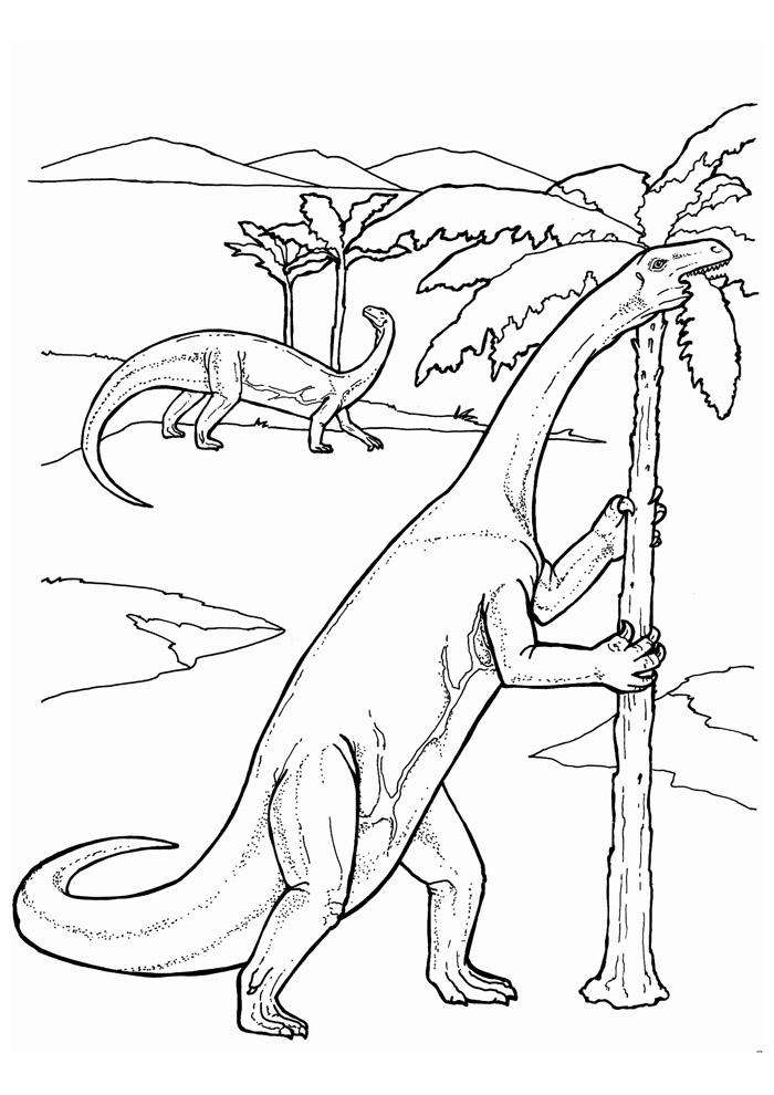 dinossauro para colorir 93