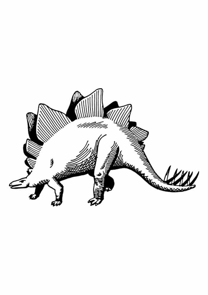dinossauro para colorir grande estegossauro
