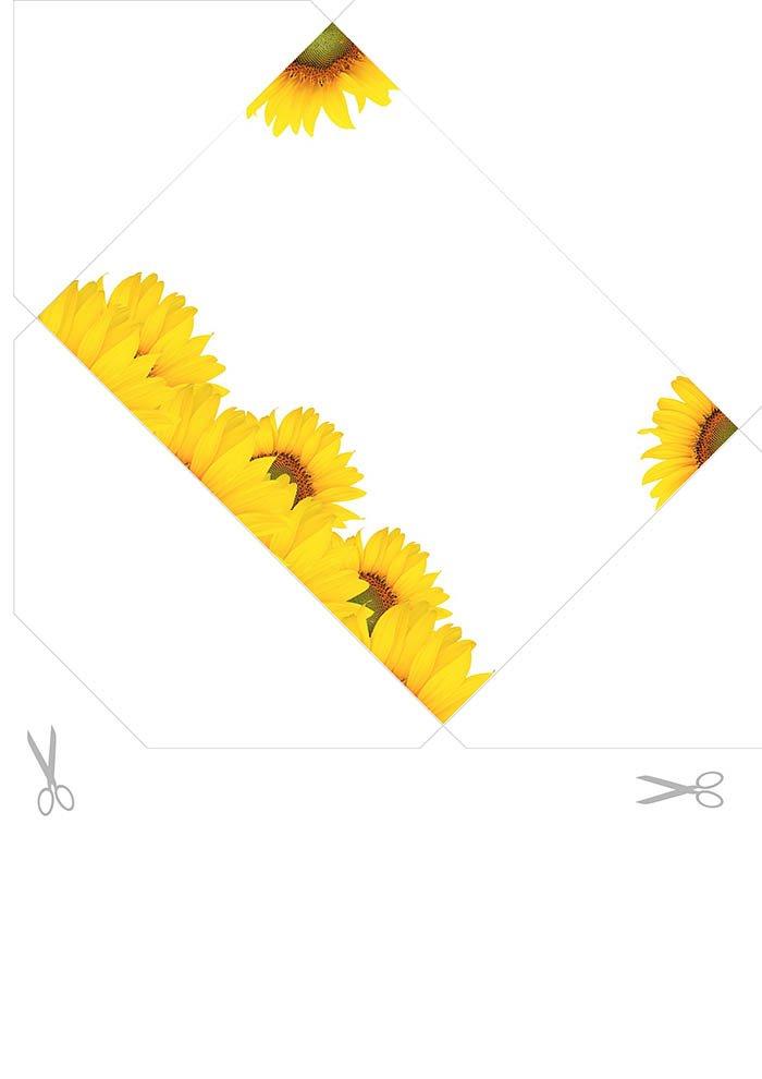 Envelope girasol