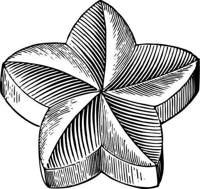 Estrela flor para colorir