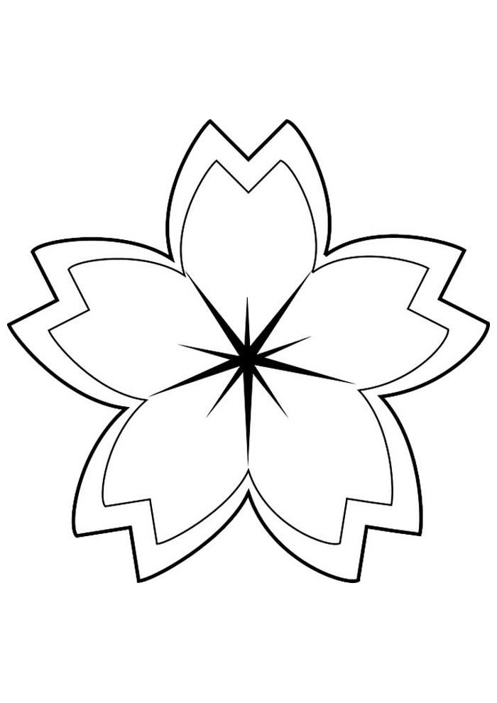 estrela para colorir 33