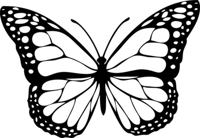 Figura de borboleta para colorir