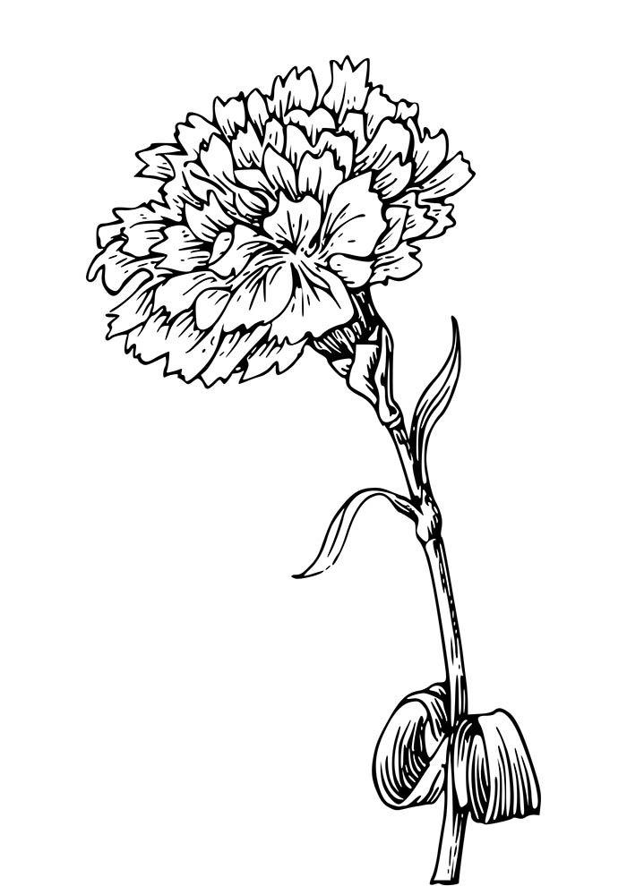 flor única para colorir