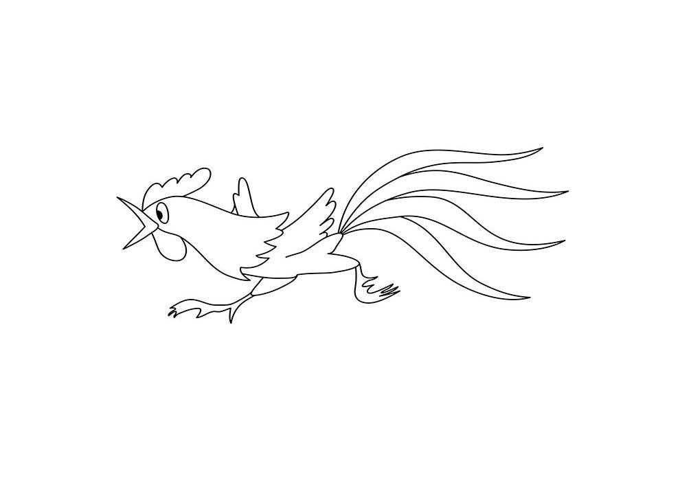 galinha para colorir