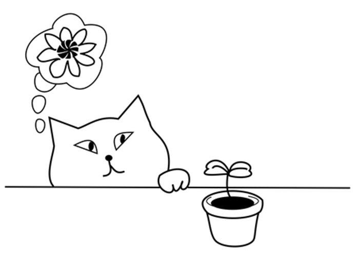 Gato com flores para colorir
