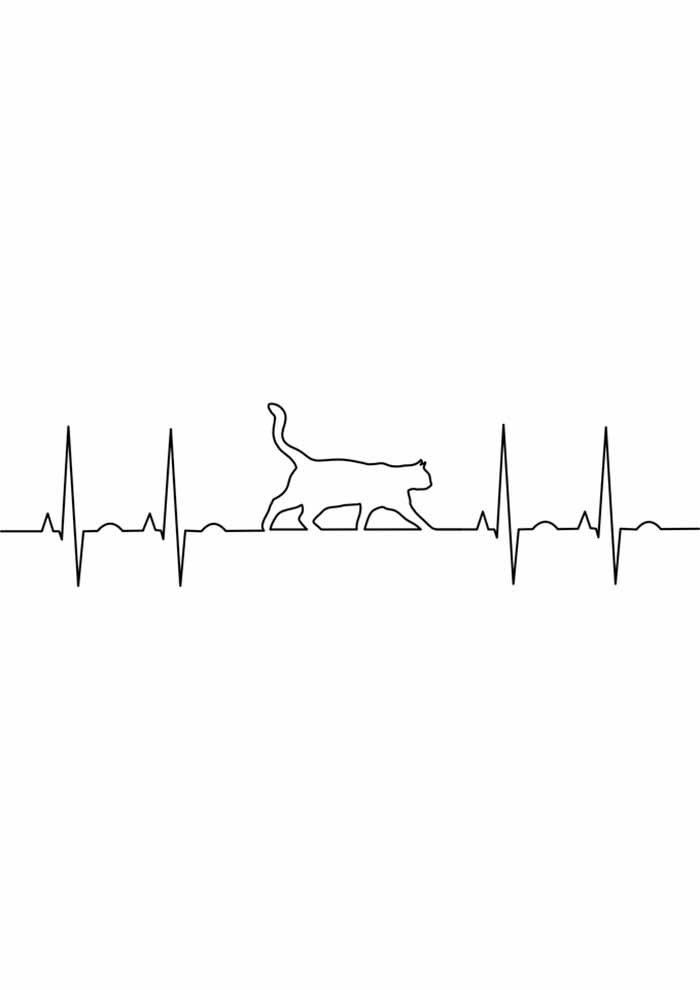 gato para colorir batimentos cardíacos