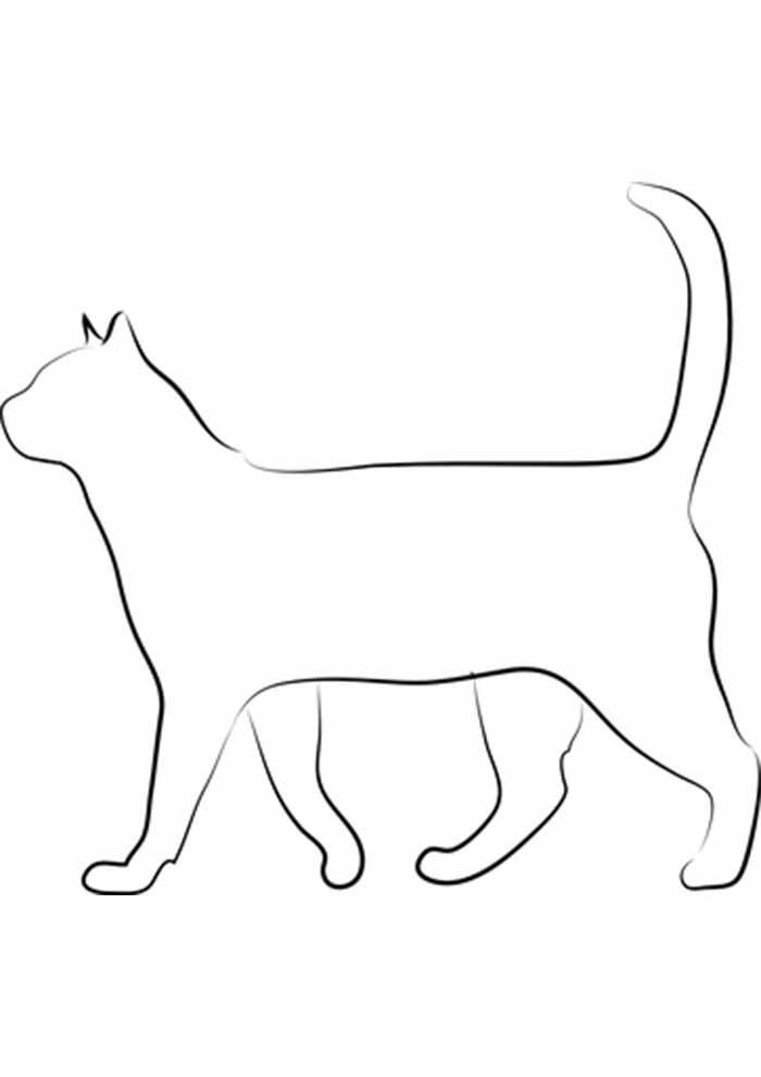 gato para colorir borda de perfil